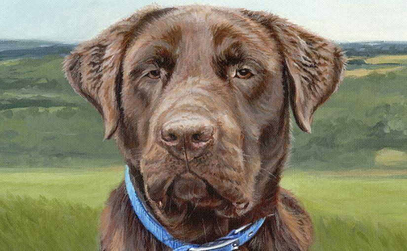 chocolate labrador painting detail