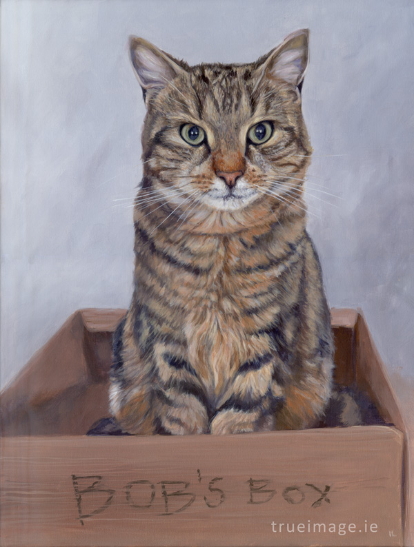 cat pet portrait painting in acrylic on stretched canvas